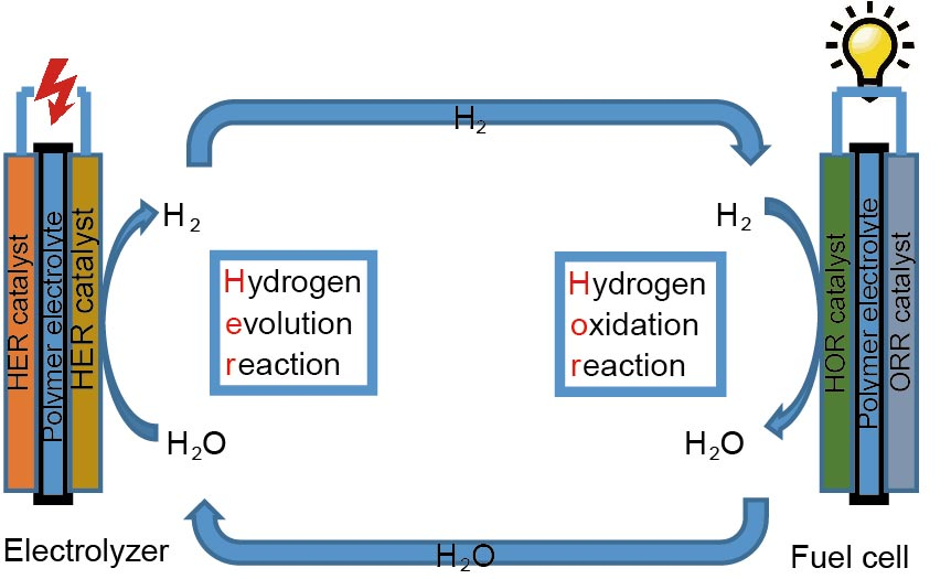 Electrocatalysts for hydrogen oxidation and evolution reactions