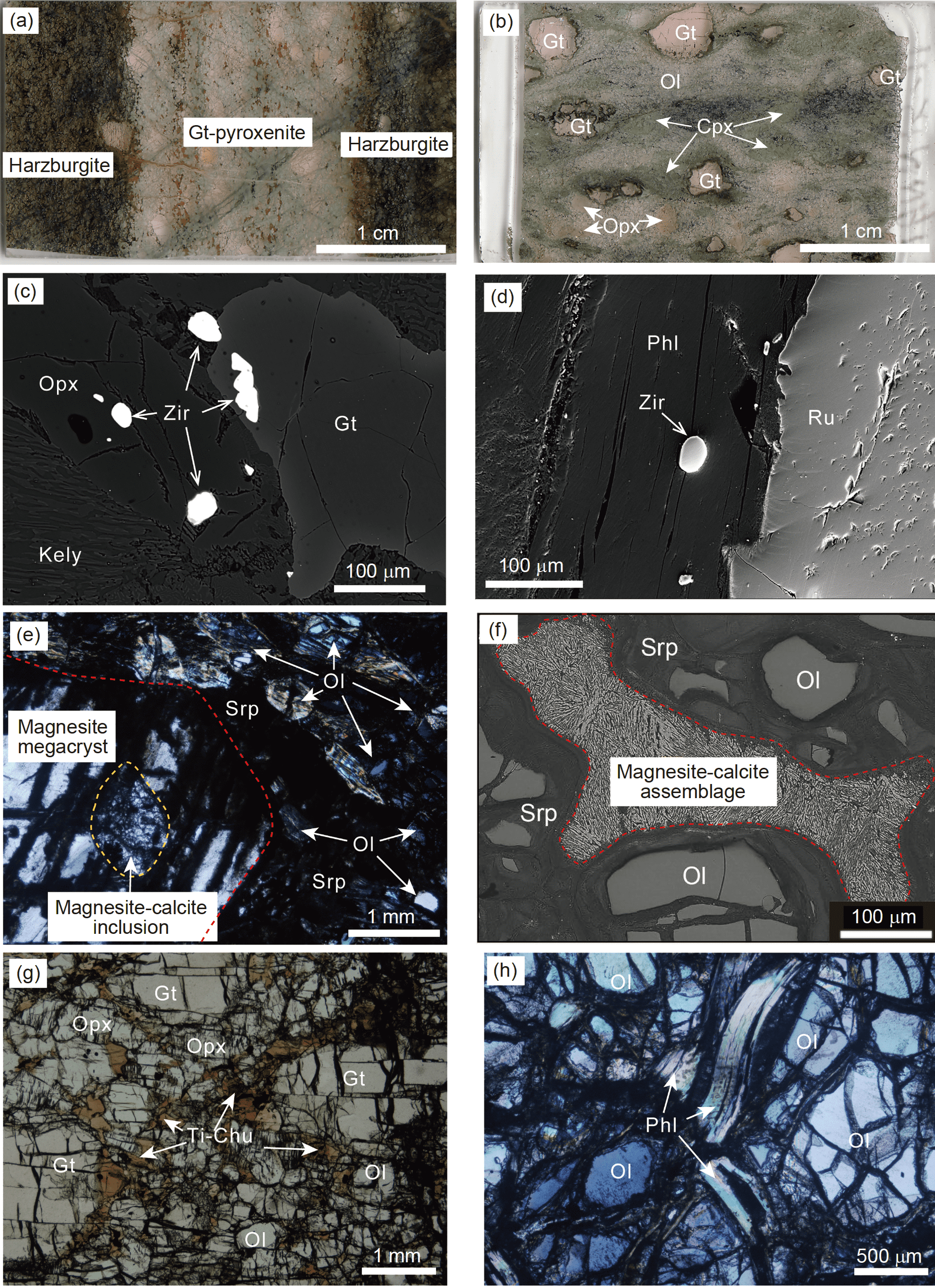 Subduction-zone peridotites and their records <sc>of crust-mantle
